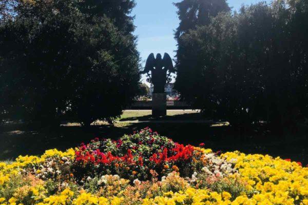 garden-9